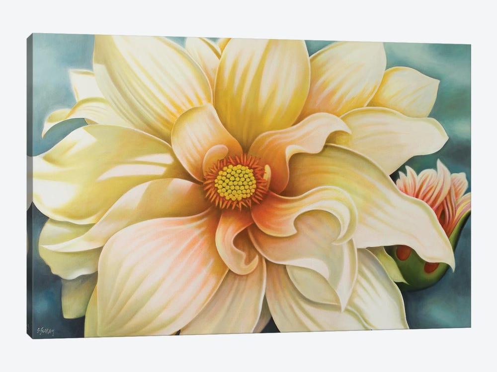 White Dahlia by Anvil Artworks 1-piece Canvas Art