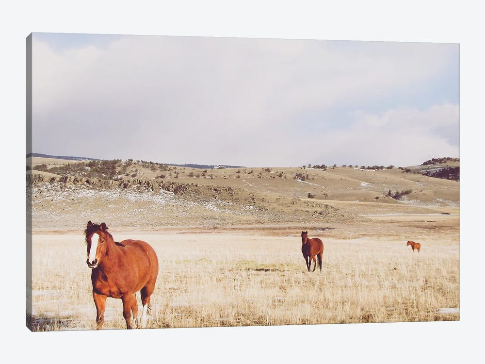 Pasture Trio by Little Cabin Art Prints 1-piece Canvas Wall Art