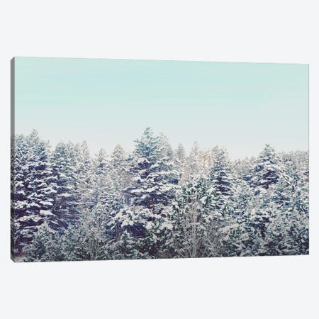 Quiet Forest Canvas Print #ABA64} by Little Cabin Art Prints Canvas Art