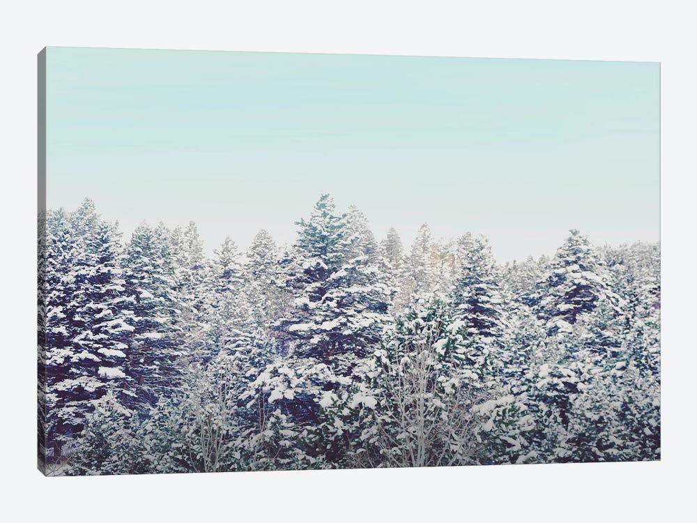 Quiet Forest by Little Cabin Art Prints 1-piece Canvas Art Print