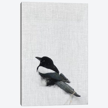 Snowy Day Magpie Canvas Print #ABA85} by Little Cabin Art Prints Canvas Artwork