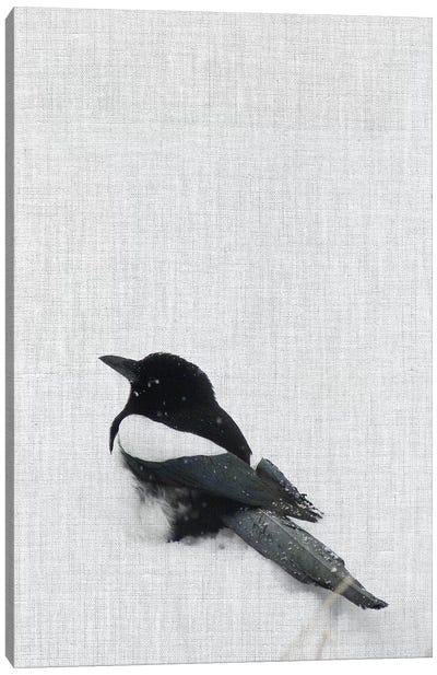 Snowy Day Magpie Canvas Art Print