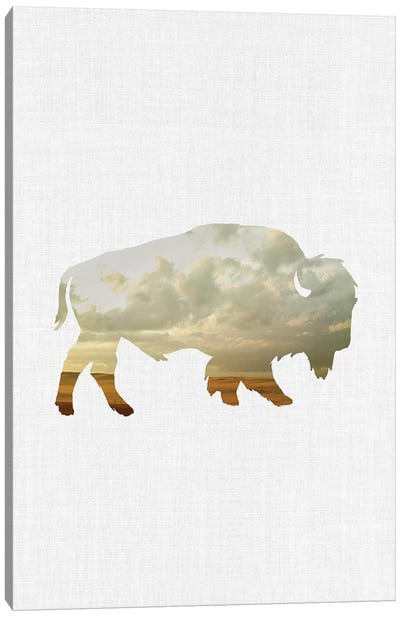 Bison And Plains Canvas Art Print