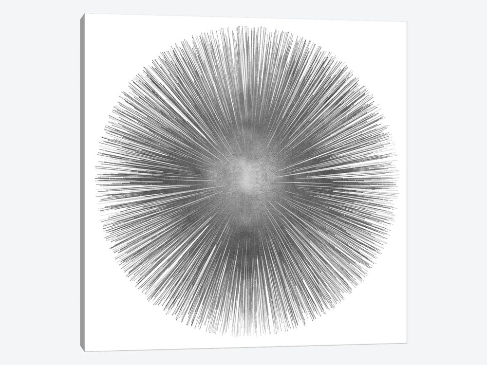 Silver Sunburst I 1-piece Canvas Artwork
