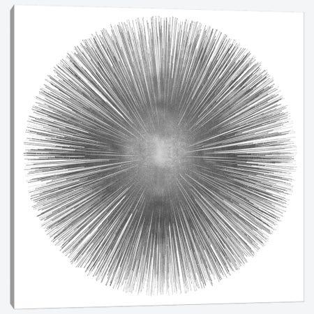 Silver Sunburst I Canvas Print #ABB10} by Abby Young Canvas Art Print