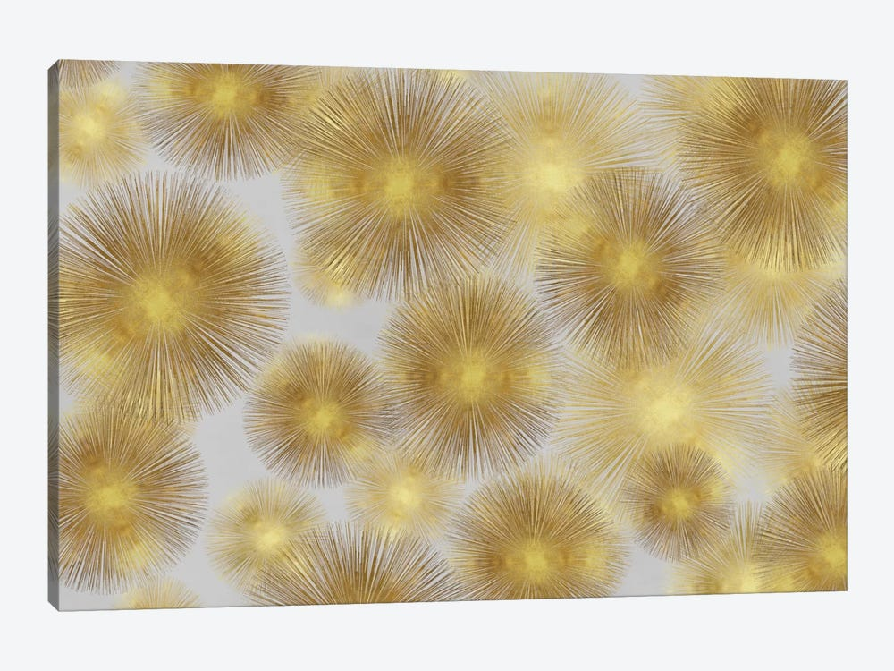 Sunburst Cluster by Abby Young 1-piece Canvas Artwork