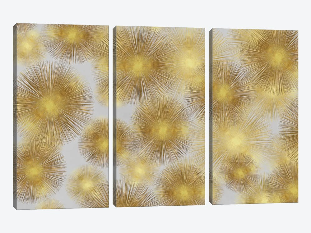 Sunburst Cluster by Abby Young 3-piece Canvas Artwork