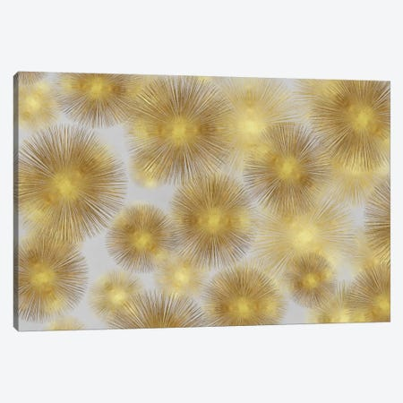 Sunburst Cluster 3-Piece Canvas #ABB16} by Abby Young Canvas Wall Art