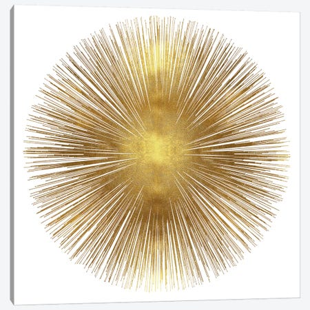 Sunburst I 3-Piece Canvas #ABB17} by Abby Young Canvas Wall Art