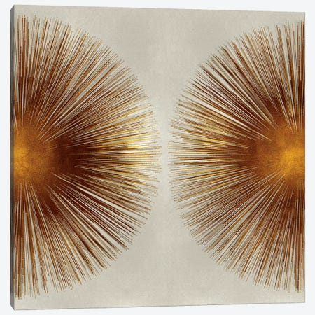 Bronze Sunburst II 3-Piece Canvas #ABB2} by Abby Young Canvas Wall Art