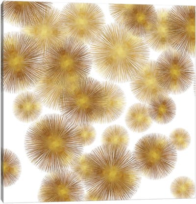 Golden Sunbursts Canvas Art Print
