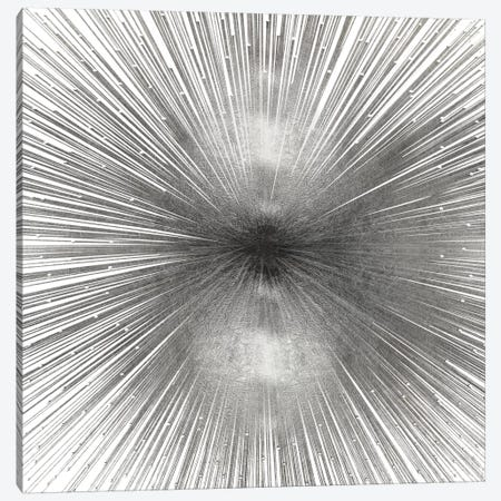 Radiant Silver Canvas Print #ABB9} by Abby Young Canvas Wall Art