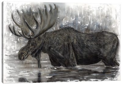 Grand Majestic Moose Canvas Art Print