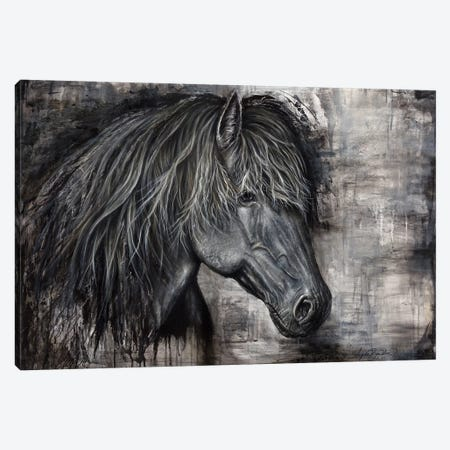 Majestic Dark Horse Canvas Print #ABD14} by Angela Bawden Canvas Artwork