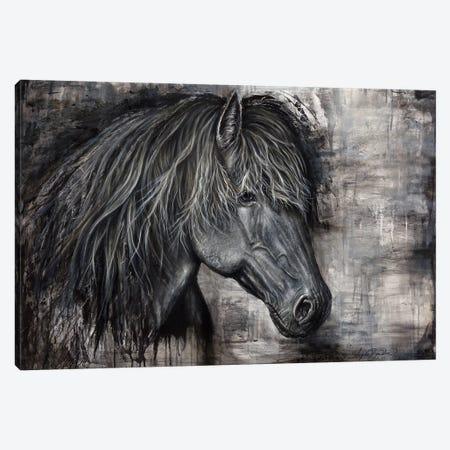 Majestic Dark Horse Canvas Print #ABD14} by Angela Bawden Canvas Artwork