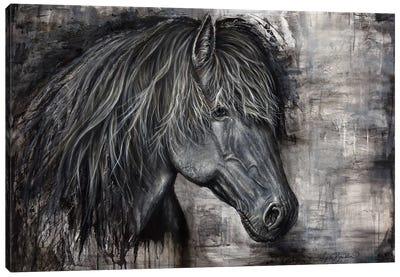 Majestic Dark Horse Canvas Art Print