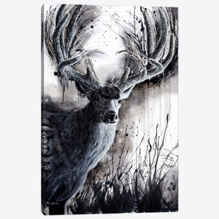Paunsaugunt Prince Canvas Print #ABD17} by Angela Bawden Canvas Artwork