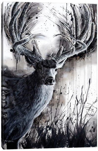 Paunsaugunt Prince Canvas Art Print