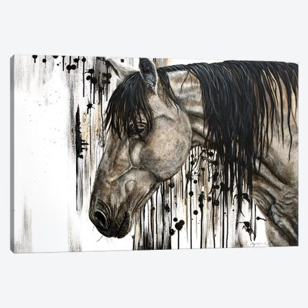 Buckskin Beauty Canvas Print #ABD1} by Angela Bawden Canvas Art