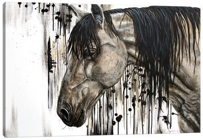 Buckskin Beauty Canvas Art Print