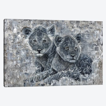 Power Of The Pride Lion Cubs Canvas Print #ABD20} by Angela Bawden Canvas Artwork