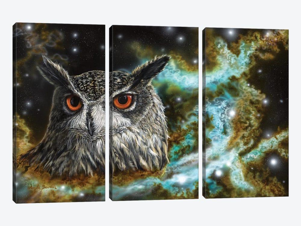 Spirit Of The Night by Angela Bawden 3-piece Canvas Artwork