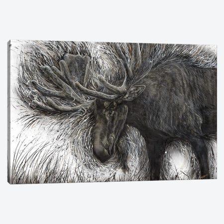 Untamed Moose Canvas Print #ABD29} by Angela Bawden Canvas Art