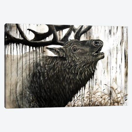 Bugling Bull Elk Canvas Print #ABD2} by Angela Bawden Canvas Artwork