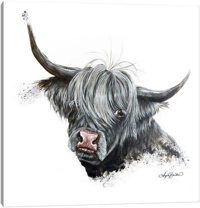 Bashful Cow Canvas Art Print