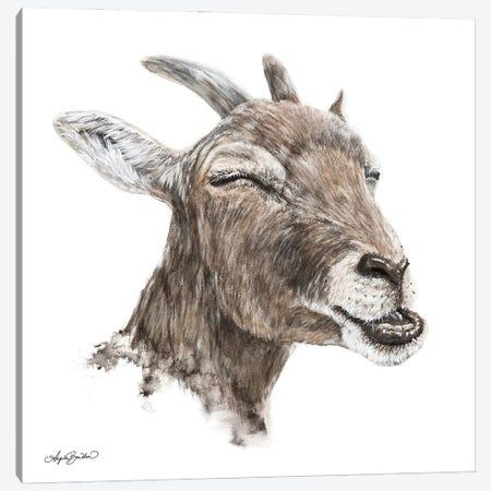 Bill The Goat Canvas Print #ABD35} by Angela Bawden Canvas Artwork