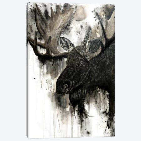 Bull Moose Canvas Print #ABD3} by Angela Bawden Canvas Wall Art
