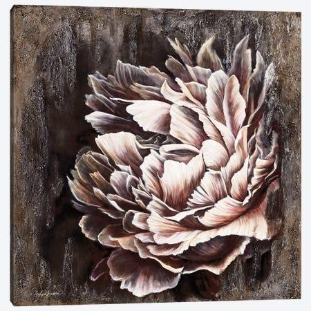 Pale Peony Canvas Print #ABD47} by Angela Bawden Canvas Print