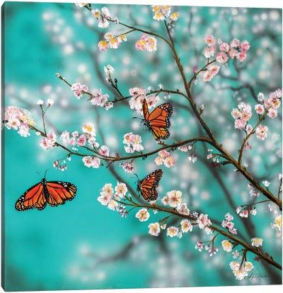 Butterflies And Blossoms Canvas Art Print