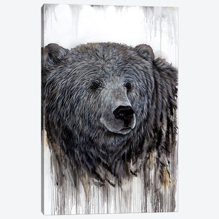Giant Kodiak Canvas Print #ABD9} by Angela Bawden Canvas Artwork