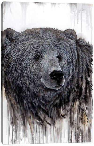 Giant Kodiak Canvas Art Print