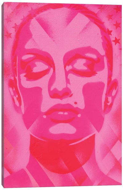 Skin Deep Pinks Canvas Art Print