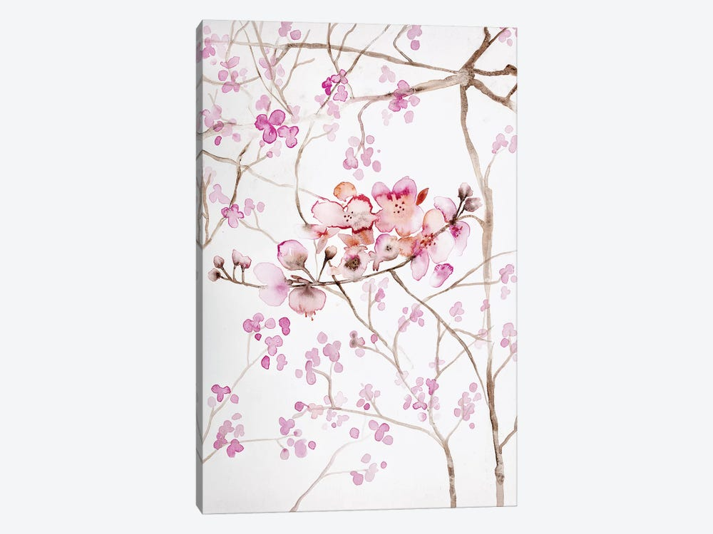 Cherry Blossoms by Andrea Bijou 1-piece Canvas Art