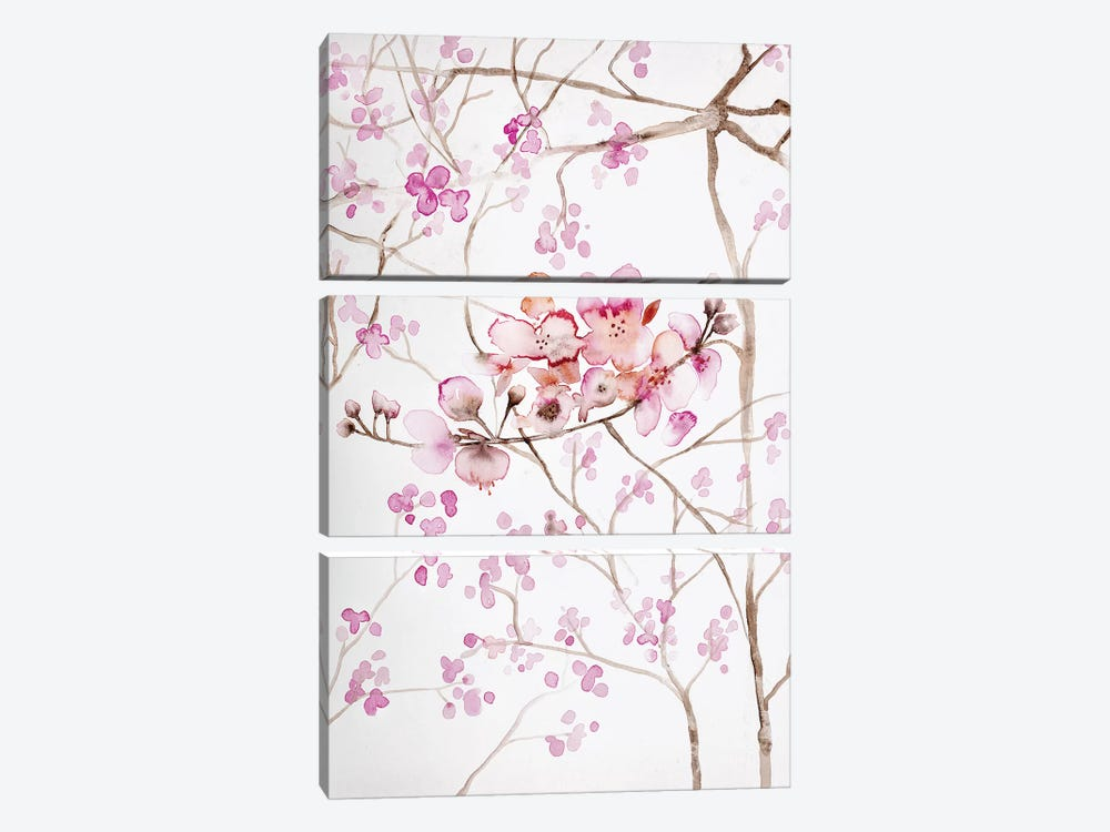 Cherry Blossoms by Andrea Bijou 3-piece Canvas Wall Art