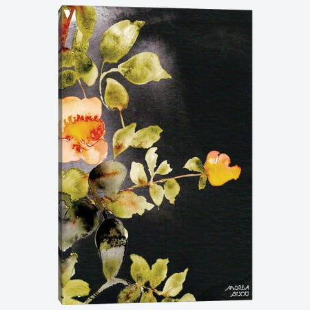 Roses on Black Canvas Print #ABI9} by Andrea Bijou Canvas Print