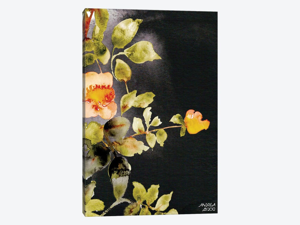 Roses on Black by Andrea Bijou 1-piece Canvas Art