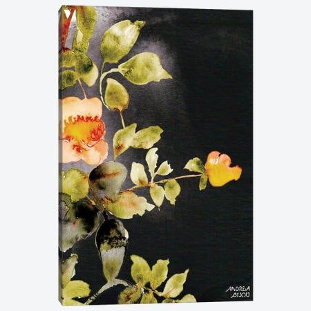 Roses on Black Canvas Print #ABI9} by Andrea Bijou Canvas Print