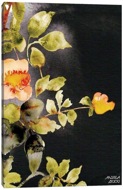 Roses on Black Canvas Art Print