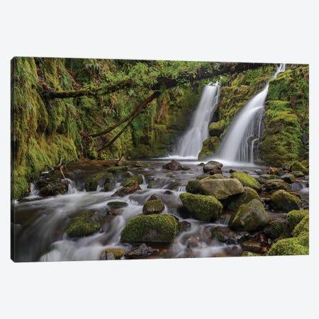 Secret Waterfall Canvas Print #ABU104} by Adam Burton Canvas Print