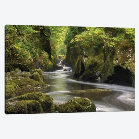 The Fairy Glen Canvas Print #ABU111} by Adam Burton Canvas Art Print