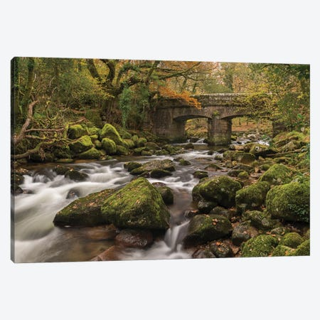 Woodland Bridge Canvas Print #ABU117} by Adam Burton Canvas Art