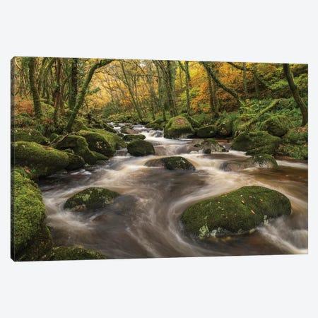 Woodland River 3-Piece Canvas #ABU119} by Adam Burton Canvas Art Print