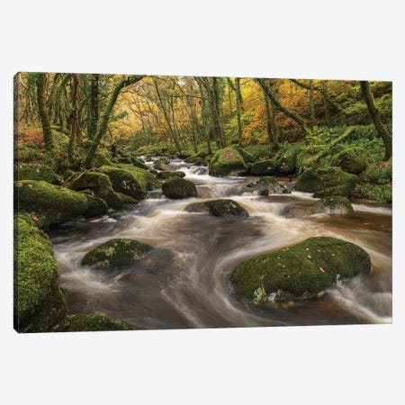 Woodland River Canvas Print #ABU119} by Adam Burton Canvas Art Print
