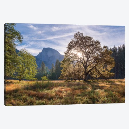 Cook's Meadow Canvas Print #ABU11} by Adam Burton Canvas Art