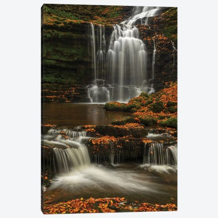 Woodland Waterfall Canvas Print #ABU120} by Adam Burton Canvas Artwork
