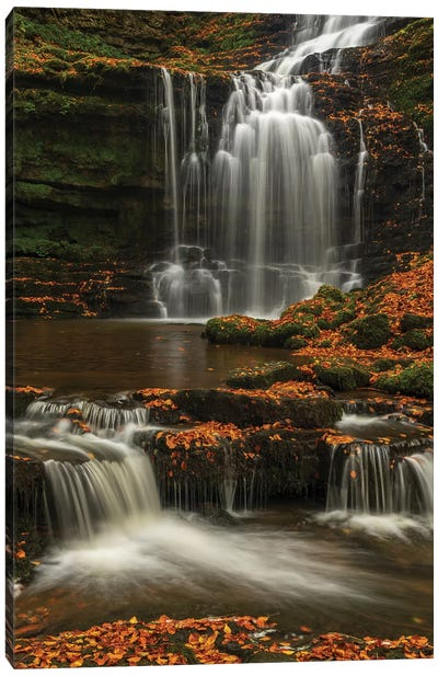 Woodland Waterfall Canvas Art Print